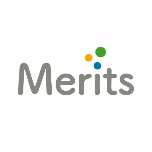 Logo Merits | Eclettica-Akura